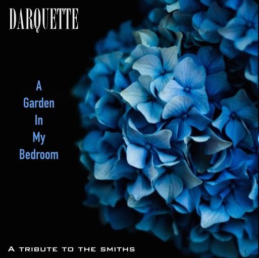 Darquette WDR10