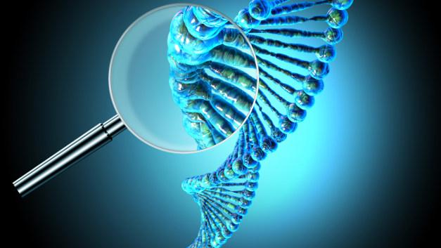 Geni BRCA ed ereditarietà del tumore al seno