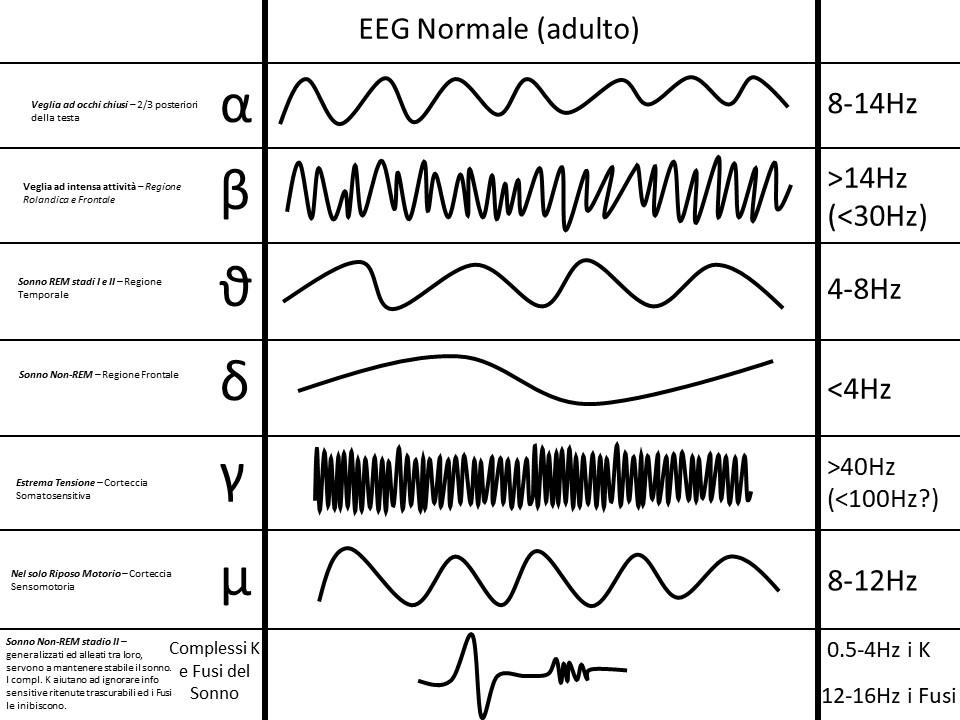 Le onde cerebrali ed il loro aspetto normale