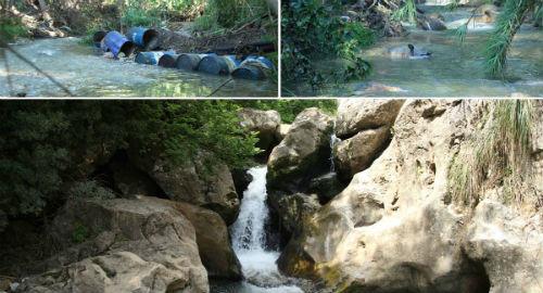 Escursione alla scoperta del fiume Oreto