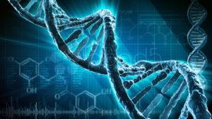 Due esponenti Neuromed nominati nel Comitato nazionale per la Biosicurezza, le Biotecnologie e le...