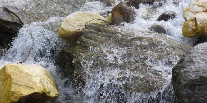 Un solo ione può influenzare un milione di molecole d'acqua