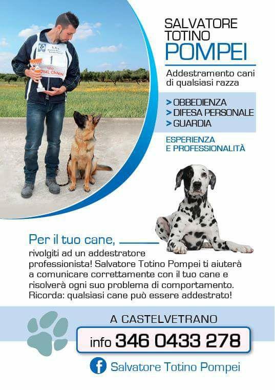 A Castelvetrano, show cinofilo con Salvatore Pompei