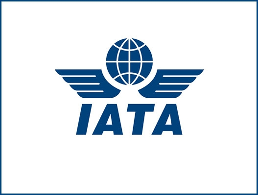 IATA asks Russia to implement global standards for sustainable aviation growth