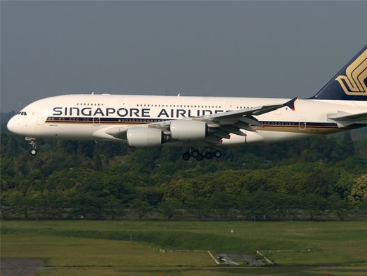 Singapore Airlines and Air NZ adds third daily Auckland-Singapore fight | Aviation