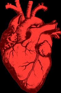 Medicina: un gene per lo scompenso cardiaco