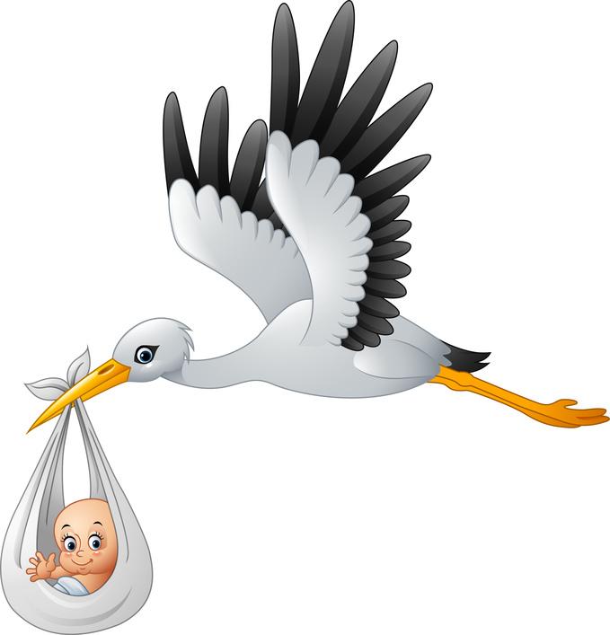 Un aiuto dalla Natura per la fertilità
