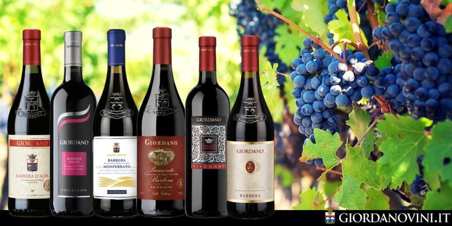 Barbera: un vino importante in 6 imperdibili varianti