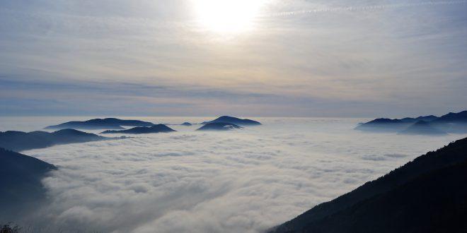 Boschi italiani: le foreste collinari dell'Italia settentrionale