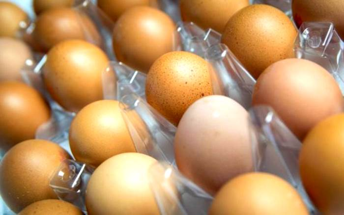 Fipronil, sequestrate uova contaminate nelle province di Viterbo e Macerata