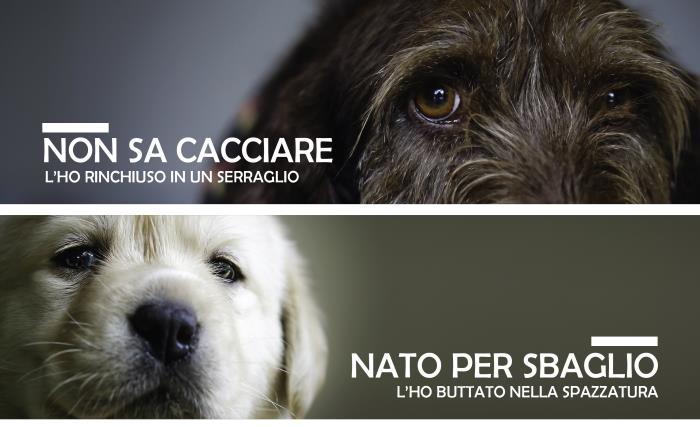 Martedì 4 luglio in piazza Duomo a Milano #TUTTESCUSE, la campagna dell'OIPA contro l'abbandono degli animali