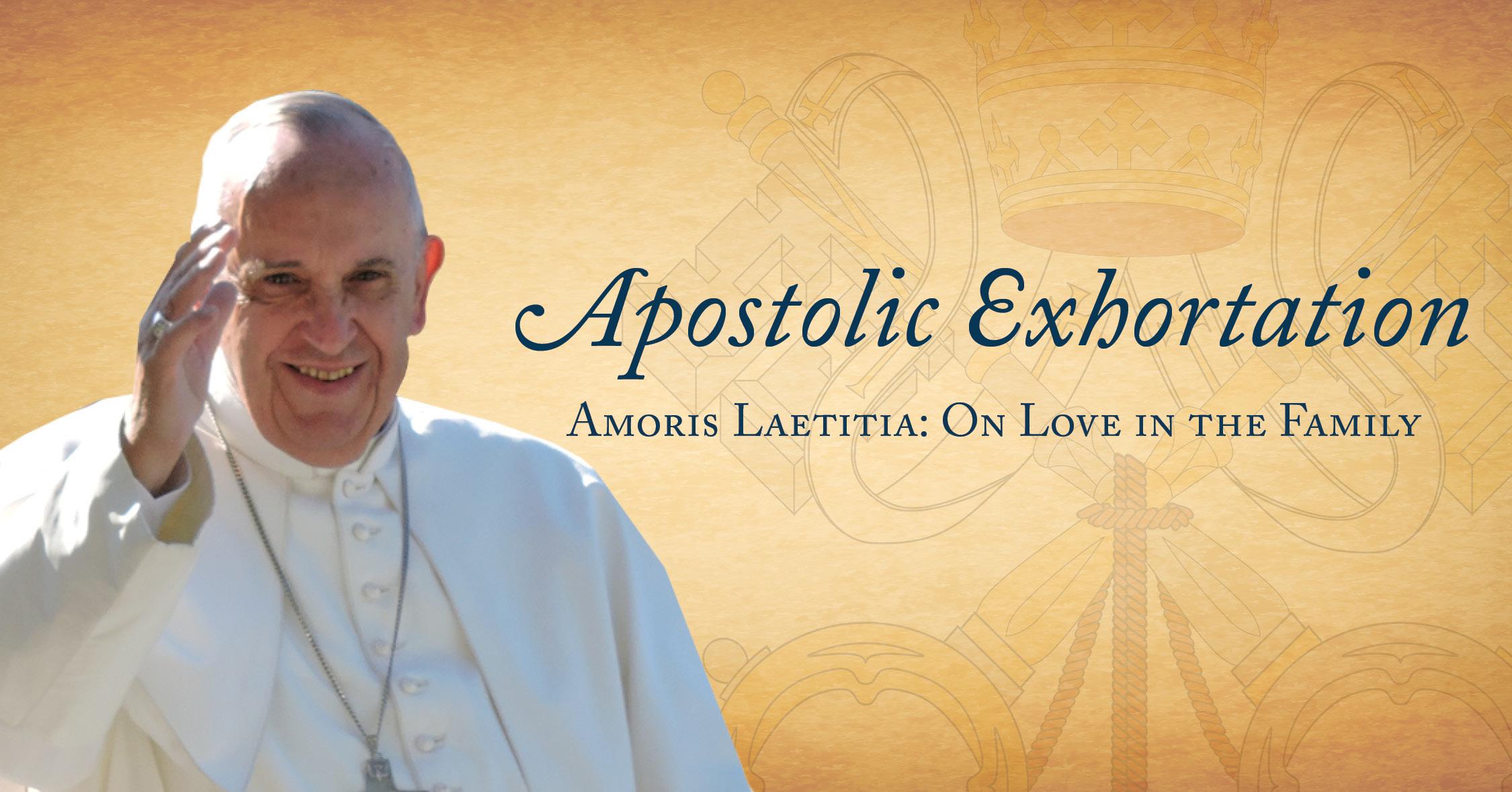 Libellus di condanna degli errori contenuti nel o alla base del documento ' Amoris Laetitia '