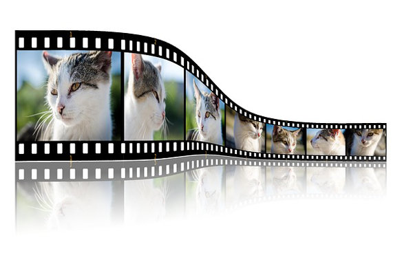 Video editing: come creare video con foto e musica
