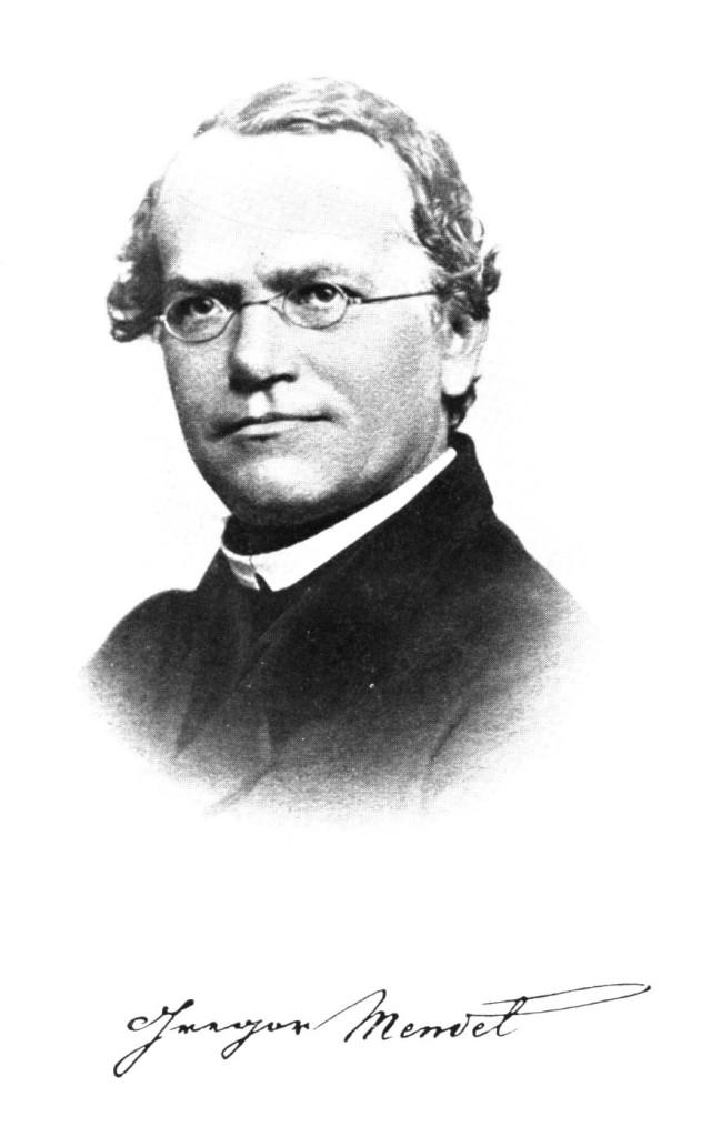 8 febbraio 1865: Le Leggi di Mendel presentate per la prima volta in pubblico