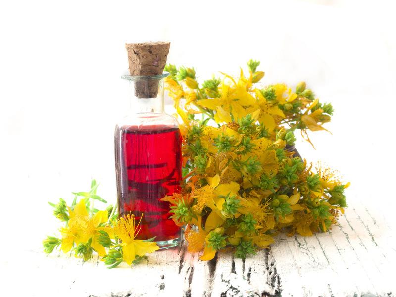Oleoliti: macerati di piante in olio