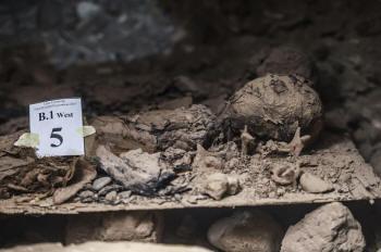 Ritrovate 17 mummie in una necropoli